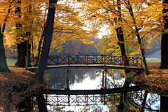 Puente en el parque en el otoño Fotos de archivo