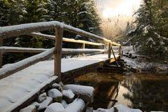 Puente en el río con nieve Imagen de archivo libre de regalías