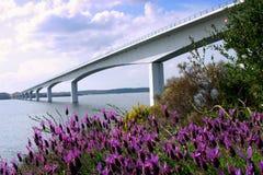 Puente en el río Guadiana Fotografía de archivo libre de regalías