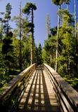Puente en el yermo Fotos de archivo