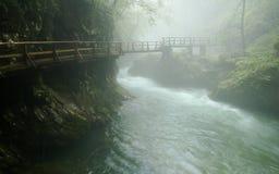 Puente en la garganta de Vintgar - Eslovenia Foto de archivo