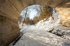 Puente en la nieve Fotografía de archivo libre de regalías