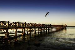 Puente en la playa imagenes de archivo