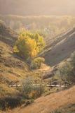 Puente en la puesta del sol Imagen de archivo libre de regalías