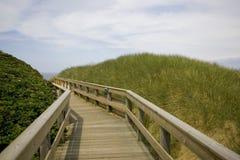 Puente en las dunas Fotografía de archivo libre de regalías