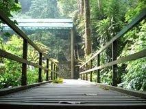 Puente en los jardines de Botannic Foto de archivo libre de regalías