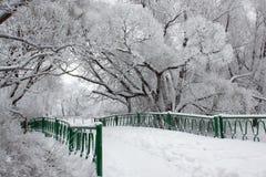 Puente en parque del invierno Foto de archivo libre de regalías