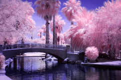 Puente en parque en infrarrojo fotografía de archivo libre de regalías