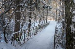 Puente en parque nevoso Imágenes de archivo libres de regalías