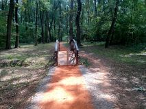 Puente en pista que activa en bosque Foto de archivo libre de regalías