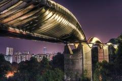 Puente en Singapur: Ondas de Henderson Imagenes de archivo