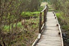 Puente en un bosque de la primavera Imagen de archivo