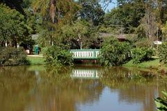 Puente en un parque Imagen de archivo libre de regalías