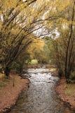 Puente en una secuencia en otoño Foto de archivo libre de regalías