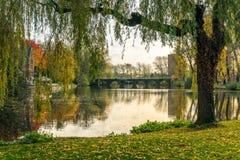 Puente enmarcado con el sauce que llora en el parque de Minnewater en Brujas, Bélgica Fotos de archivo