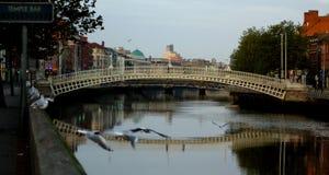 Puente famoso del medio penique en Dublín, Irlanda Foto de archivo