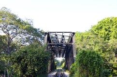 Puente ferroviario verde Foto de archivo