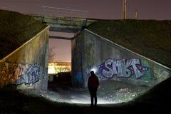 Puente ferroviario verde Foto de archivo libre de regalías