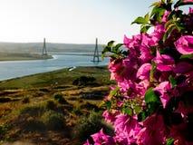 Puente Internacional del Guadiana, Bridge over the Guadiana River in Ayamonte, Huelva. Spain Royalty Free Stock Photo