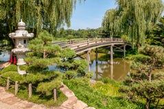 Puente japonés de la isla en el jardín botánico de Chicago, los E.E.U.U. imagen de archivo