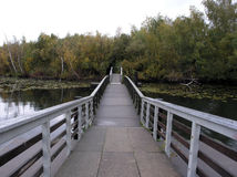 Puente a la isla del pantano Imágenes de archivo libres de regalías