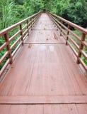 Puente a la selva Imagen de archivo