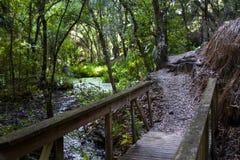 Puente a la trayectoria a través del bosque Imagenes de archivo
