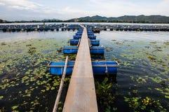 Puente a las granjas de pescados Fotos de archivo