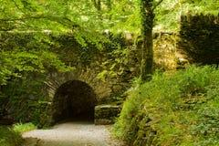 Puente medieval en bosque Fotos de archivo libres de regalías