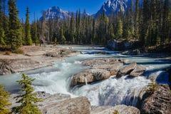 Puente natural, Yoho National Park, Alberta, Canadá imagen de archivo