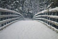 Puente Nevado Foto de archivo libre de regalías