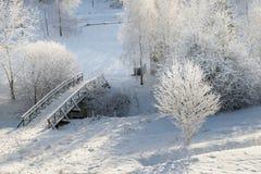 Puente Nevado desde arriba de 2 Fotografía de archivo libre de regalías