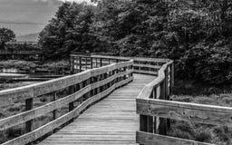 Puente a ningún donde Fotos de archivo