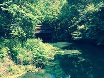 Puente ocultado Fotografía de archivo