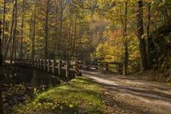 Puente, otoño, Tremont, Smokies NP Imagen de archivo libre de regalías