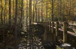 Puente, otoño, Tremont, Smokies NP Foto de archivo