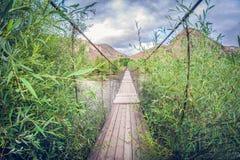 Puente peatonal de la vieja suspensión sobre el río lente de fisheye de la perspectiva de la distorsión fotografía de archivo libre de regalías