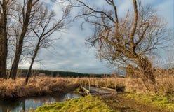 puente peatonal a través de una corriente en el tiempo nublado del otoño de la región pantanosa Foto de archivo