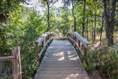 Puente que camina en el lago inks Imagen de archivo