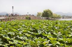 Puente quebrado, lago del oeste, Hangzhou Imagen de archivo libre de regalías