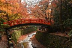Puente rojo en un jardín japonés con los arces rojos, mares de la caída Imágenes de archivo libres de regalías