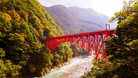 Puente rojo japonés en bosque Fotos de archivo