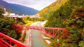Puente rojo japonés en bosque Imágenes de archivo libres de regalías