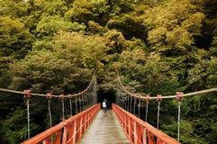 Puente rojo, Kami No Iwahashi en el valle de Dakigaeri - Senboku, Akit foto de archivo