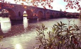 Puente Romanobro i Merida, Spanien som filtreras arkivbilder