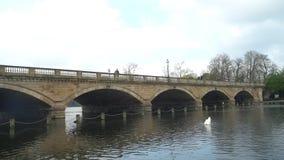 Puente serpentino en Hyde Park almacen de video