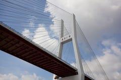 Puente Shangai de Nanpu Fotografía de archivo libre de regalías