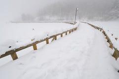 Puente sobre Abant Lake-3 Imagen de archivo libre de regalías