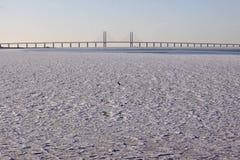 Puente sobre el agua helada fotografía de archivo