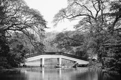 Puente sobre el lago Imagen de archivo